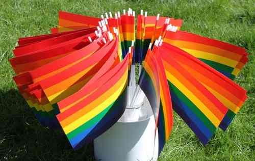 50 Rainbow paper flags on stick
