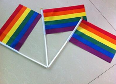 Pack of 10 Rainbow flags on white stick  (14 x 21 cm)